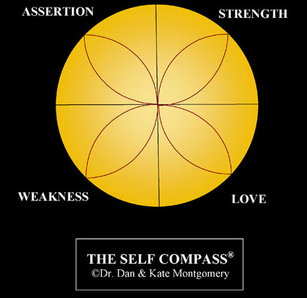 SELF COMPASS THERAPY